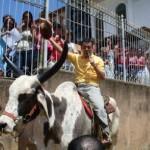 Padre Toninho dá as Bençãos montado em um touro nas comemorações de Nossa Senhora Aparecida