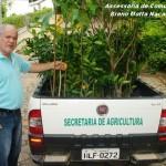 Secretaria de Agricultura Distribui Muda para Produtores