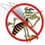 Secretário de Meio Ambiente Francisco Cabral esclarece algumas medidas e apresenta propostas para o Plano de enfrentamento à dengue em Carangola.