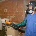 Ministério Público culpa Prefeitura de Carangola por surto de dengue