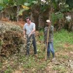 SEMADS faz parceria com a CEMIG para poda de árvores em risco para rede elétrica