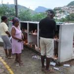 Celebração de missa campal marca o Dia de Finados em Carangola