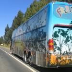Onibus do Fala Mansa sofre acidente em Orizania.