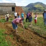 Projeto da Emater-MG garante 50% de desconto em análises de amostras de solo em Carangola