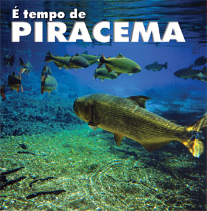 Piracema interrompe pesca em Goiás
