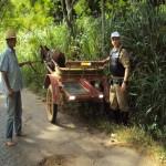 Policia Rodoviária de Carangola continua na Prevenção de acidentes-Campanha faixa refletiva/2012
