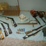 Operação integrada resulta em prisões e apreensões de armas e pássaros da fauna silvestre