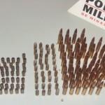 ORIZÂNIA: Polícia apreende grande quantidade de munições.