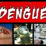 Mais de 13 mil casos de Dengue são registrados em Minas Gerais em uma semana.