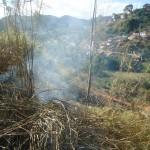 Inicio de queimada na estrada de Faria Lemos.