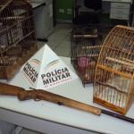 4ª Cia PM Independente de Meio Ambiente e Trânsito Rodoviário apreende arma e localiza pássaros em cativeiro na zona rural de Carangola.
