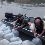 Soltura de 65.000 peixes no Rio Pomba.