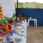 Manhuaçu-Agricultura Familiar desperta atenção e se torna modelo no Córrego dos Diniz.