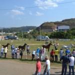 Exposição do Mangalarga Marchador é sucesso em Manhuaçu.