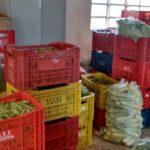 Secretaria de Agricultura faz a primeira entrega de alimentos de 2017.