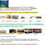 Fiscalização da pesca no período da Piracema.