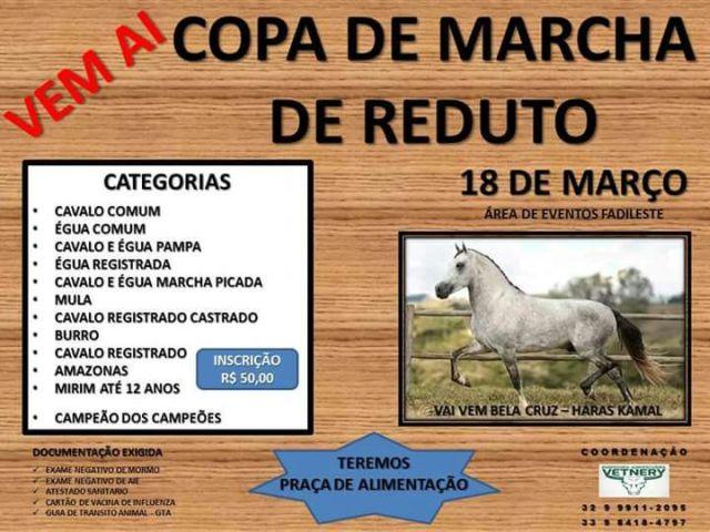 Copa de Marcha em Reduto.